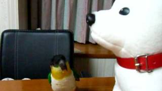 犬のおしゃべりにビックリ.AVI