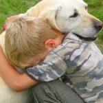 「犬と飼い主の感動再会」長く離れてた飼い主を大喜びに迎える犬 2017