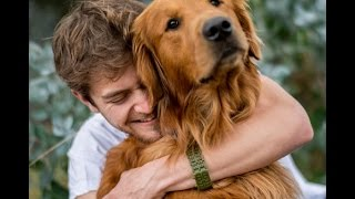「泣ける感動」ゴールデンレトリバーはただの犬ではない!最高のお友達!