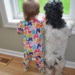 超カワイイ!犬と子供の仲良し画像集!!