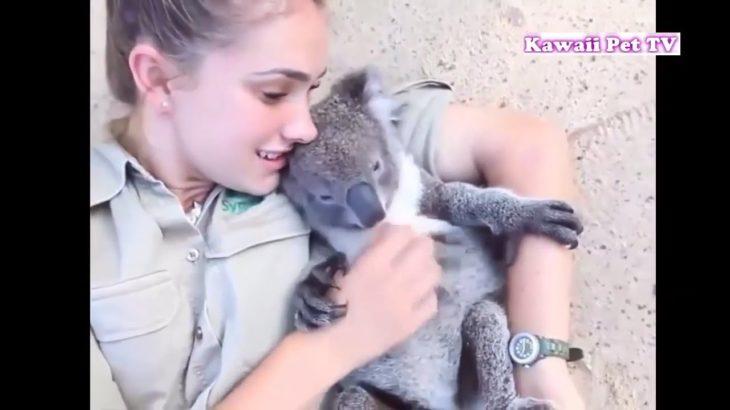 「可愛い動物」見ててリラックスになる動物たちの甘える瞬間