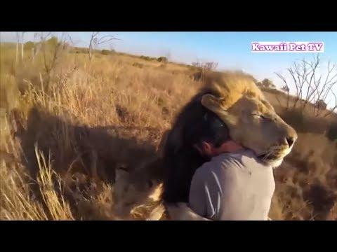 「泣ける感動動物」見てて幸せな気分になる動物と人間の感動の再会,送別動画集