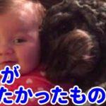 【海外犬の泣ける話】家に炎が…!中には赤ちゃん…愛犬が取った行動に涙が止まらない
