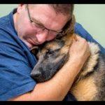 「犬感動の再会」数年ぶりに飼い主に会えた犬が大号泣・せつない鳴き声に涙
