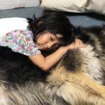 #シェーパード犬と孫娘のヒトコマ風景・熱中症に気をつけよう