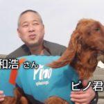 [犬のサーフィン大会]V4の名犬
