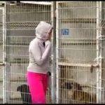 犬の保護施設を訪れ、引き取る犬を選びきれなかった女性。驚くべき決断をした。