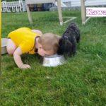 「おもしろい赤ちゃんと犬」犬の吠える声にビックリする赤ちゃんが超かわいい