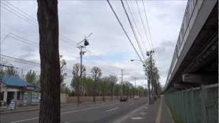 自衛隊ヘリコプター緊急上昇 柴犬散歩♪ shiba inu 柴犬動画  video Japan sibainu