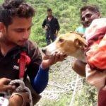 [感動]犬の命を救う人間のとっさの行動、泣ける動画