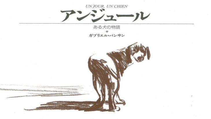 【永遠に語り継がれる泣ける絵本】涙腺崩壊「アンジュールある犬の物語」子供たちに命の尊さと家族の大切さを教えてあげてくださいchinta ch