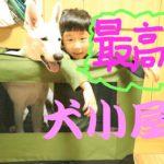 大型犬用ソフトゲージならコレ!!~ホワイトシェパードさくら~