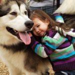#1【犬と赤ちゃん】絶妙な関係! 仲良しすぎ! 何をされても怒らない・かわいい犬と赤ちゃん