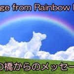 【泣ける 感動する話】「虹の橋~あなたの愛するペットからのメッセージ~」chinta ch