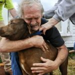 「泣ける感動再会」震災で生き別れた愛犬, 猫と飼い主の再会・感動しすぎる