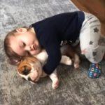 【犬と赤ちゃん仲良し】最高におもしろい赤ちゃんと犬のハプニング・赤ちゃんと犬絶妙な関係 #4