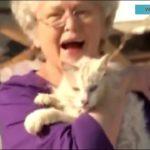 「泣ける動画感動の再会」震災で生き別れた愛犬 猫と飼い主の再会・感動しすぎる